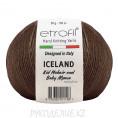 Пряжа Iceland Etrofil 70708 - Коричневый