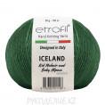 Пряжа Iceland Etrofil 70419 - Зеленый