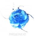 Брошь Цветок роза d-120мм 09, син